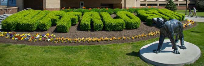 Buffalo State landscaping outside of Houston Gym