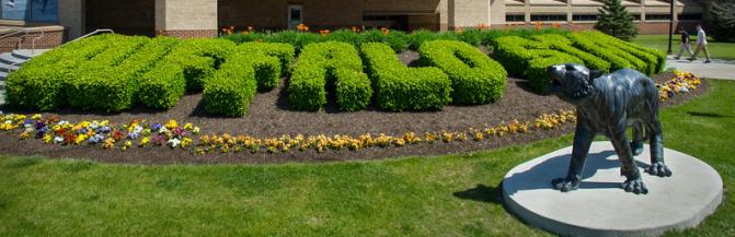 Buffalo State landscaping outside of Houston Gym